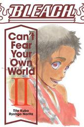 Bleach: Can't Fear Your Own World, Vol. 2